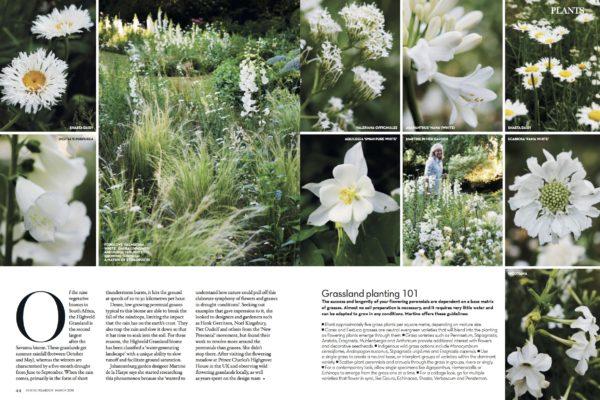 Martine Garden Designer Consultant March 2018