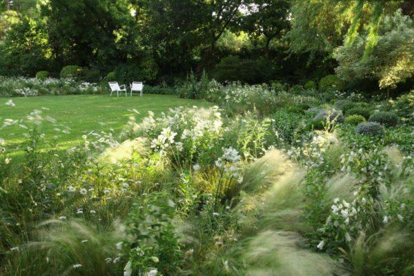 De la harpe Landscape Design - moving grass landscape